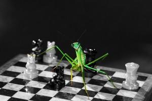 ChessMente